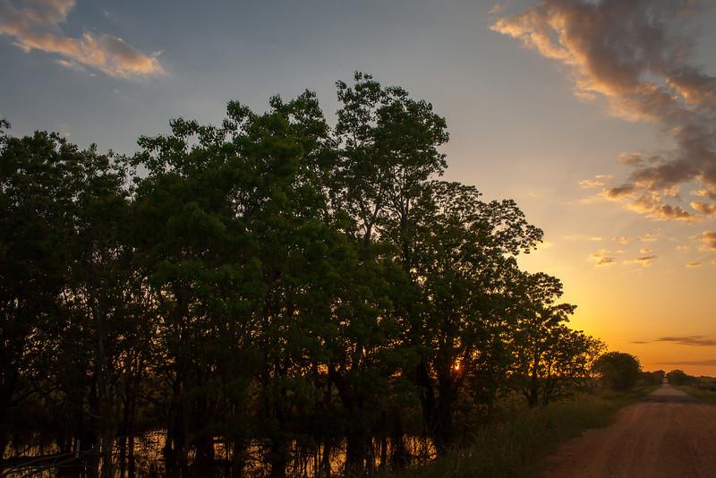 2016_4_9 Texas Wildflower Shoot-9010.jpg