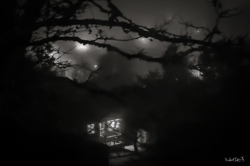 moon in the mist window with tree bw (1 of 1)014