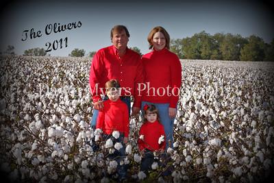 Cotton Field-10-23-11