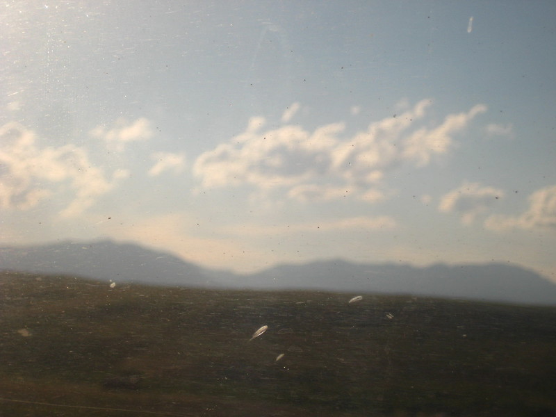 2008-07-24-YOCAMA-Montana_2682.jpg