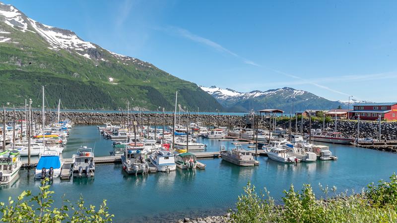 AlaskaSummer2018-1807.jpg