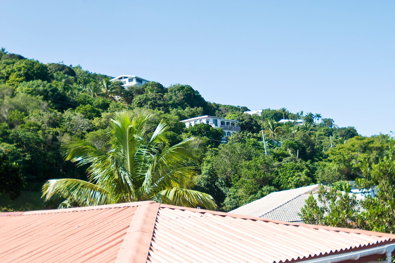 Hillside view of St Thomas from the Estate St Peter Greathouse