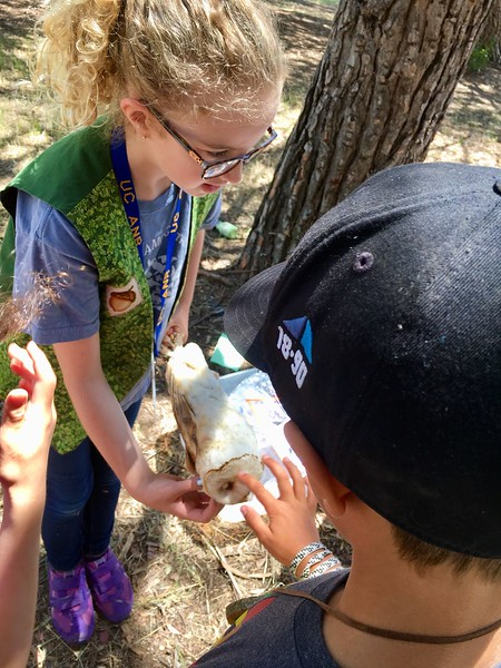 City of San Luis Obispo Jr. Ranger Camp 2019