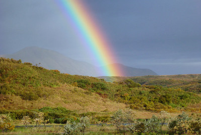 Kodiak Island 2012