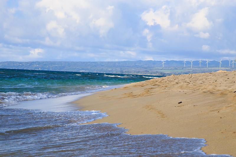 Hawaii-North Shore 2017-8890.jpg