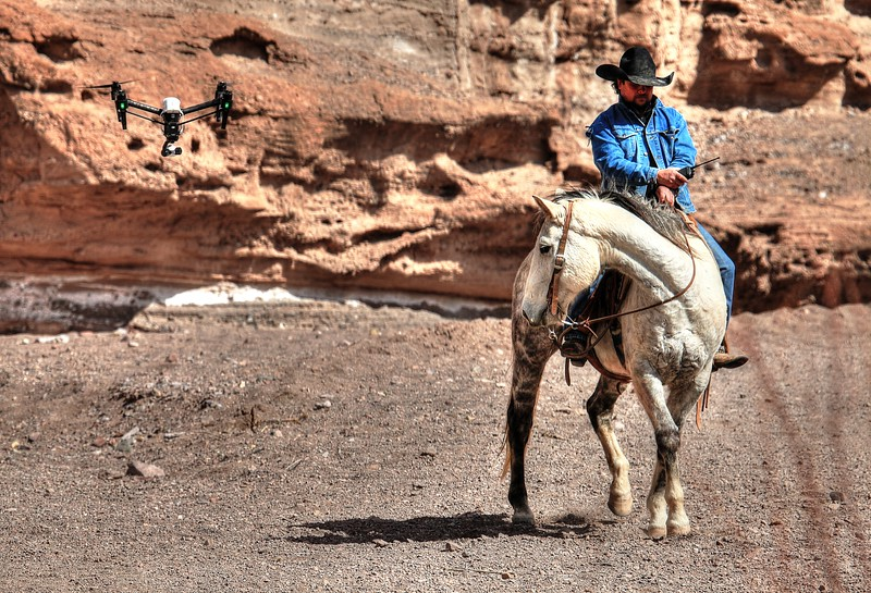 drone breaking horses.jpg