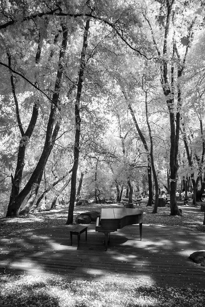 Uvas County Park - September 4th 2016