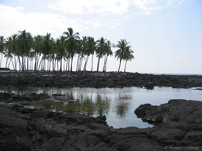 Kona and the southwest coast