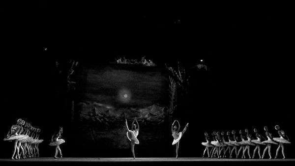 Swan Lake - Second Act