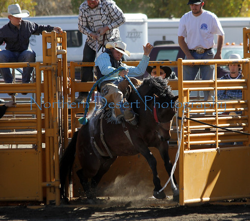 Saddle Bronc ~ Sunday