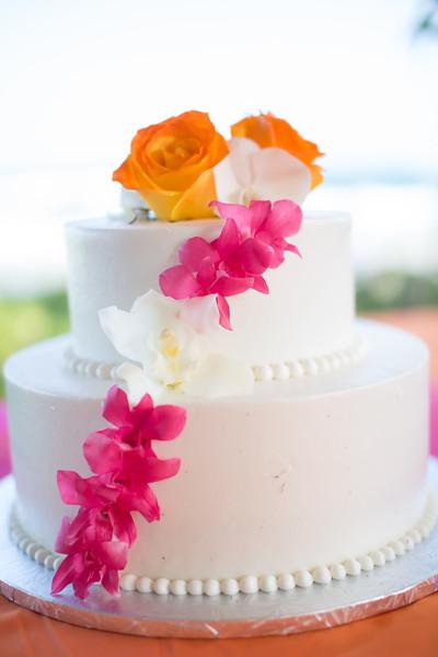 gillin beach kauai wedding-139.jpg