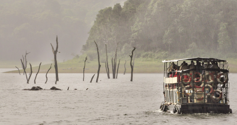 Kevin O'Neill - Elephants crossing  5265.jpg