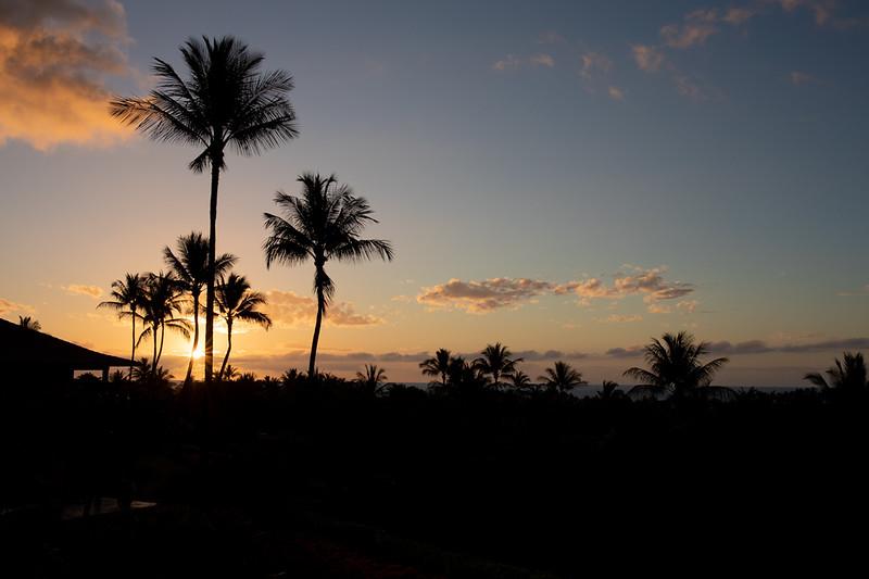 Travel_Hawaii_03052020_0021.jpg