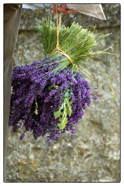 lavender and baguette.jpg