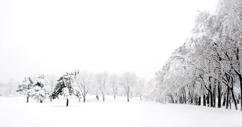 snowing-30d-070405-6874.jpg