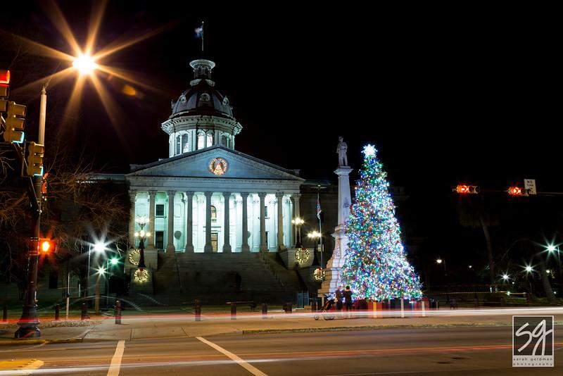 Christmas_ColumbiaSC_SarahGoldmanPhotography (3).jpg