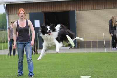 KC Delft Dag van de Hond 2012