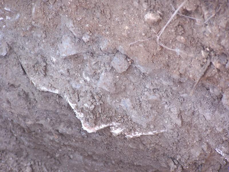 050621-NotACornfield-Scars081.JPG