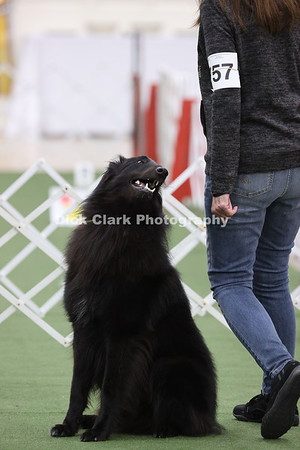 2021 BSCA Obedience Novice B - Part 2