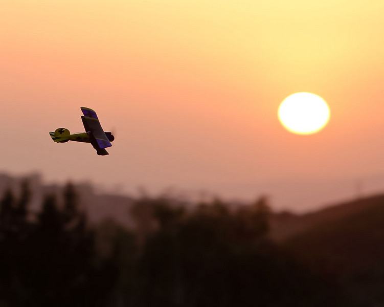 AlbatrosSunset11.jpg