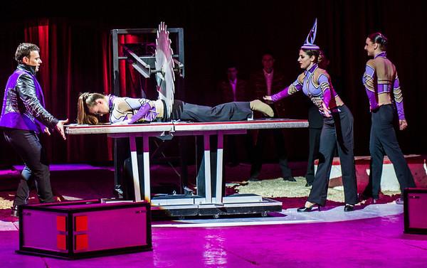 Cirkus 2014
