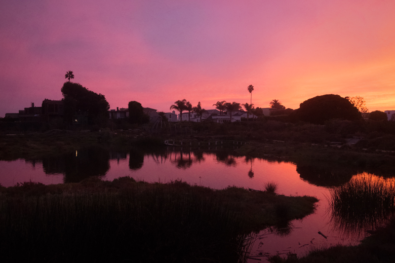 November 12 - Malibu Lagoon.jpg