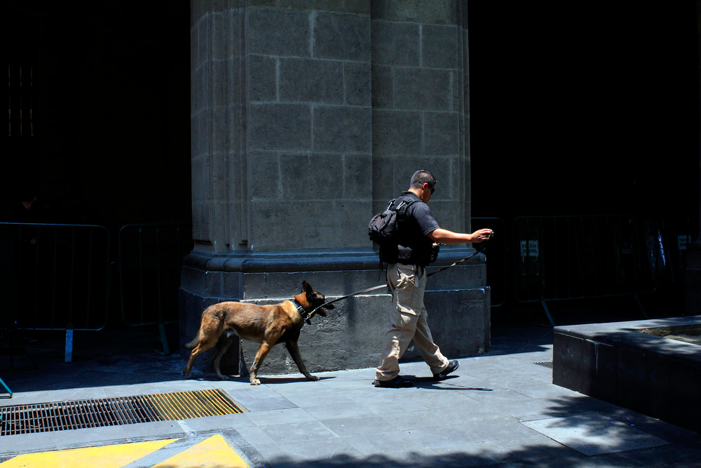 . A Mexican Federal policeman patrols with his sniffer dog at Zocalo Square, hours before the arrival of US President Barack Obama in Mexico City, Mexico on May  02, 2013. Obama headed to Mexico on Thursday to put trade back at the heart of bilateral ties, but his southern neighbor\'s shifting drug war tactics loom large over the visit.    HECTOR GUERRERO/AFP/Getty Images