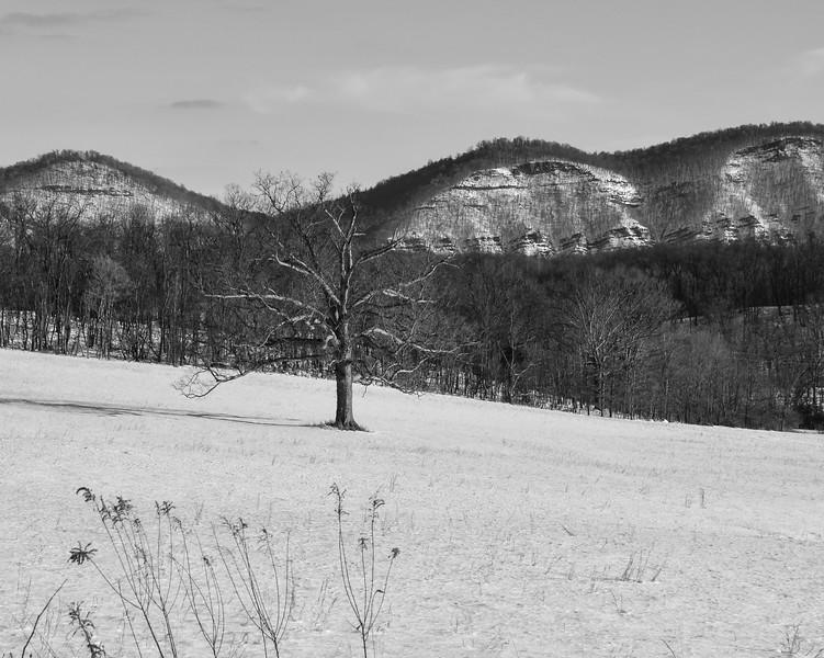 Snow.2016.Keyser.WV.Edit.sharp-0161.jpg
