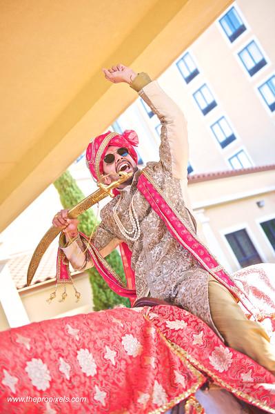 Shiva-Wedding-2018-03-002716.JPG