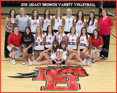 2008 Mansfield Legacy Varsity Volleyball Team