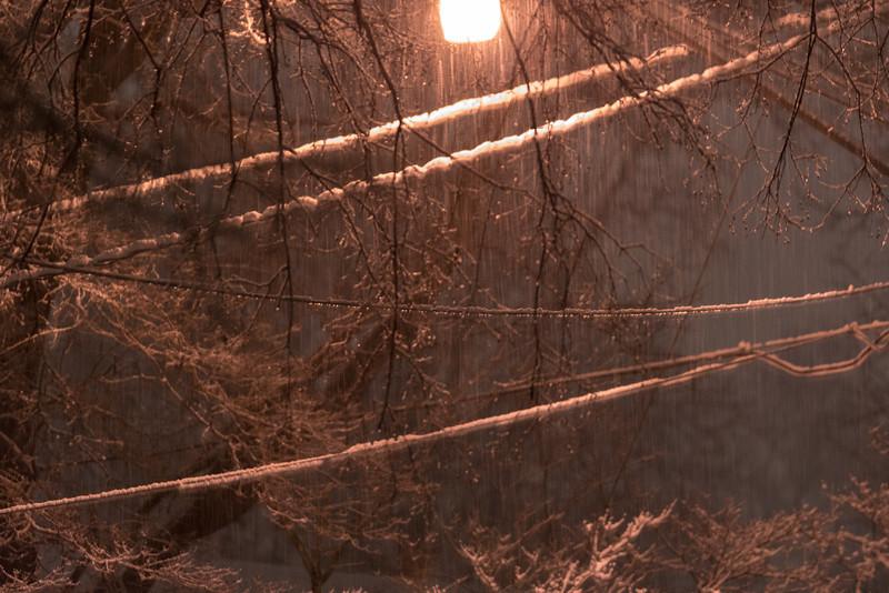 20140212-snow-DSC_4555.jpg