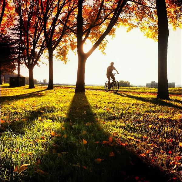 2011-10-09_1318126034.jpg