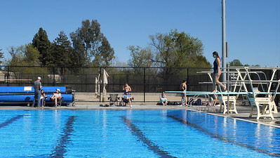 210327 DIVING (LHS AND GHS)