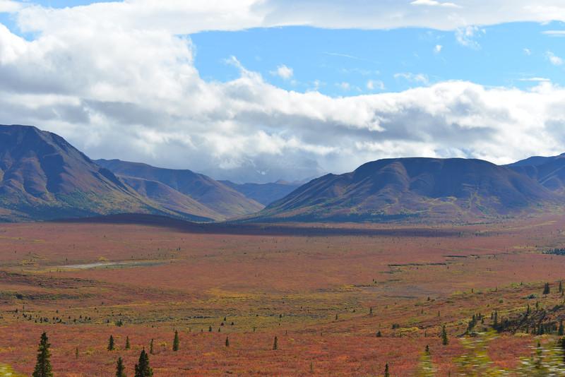 Alaska Fall 2013 - 151.jpg