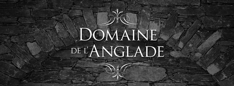 Domaine-FB-Header-6.png