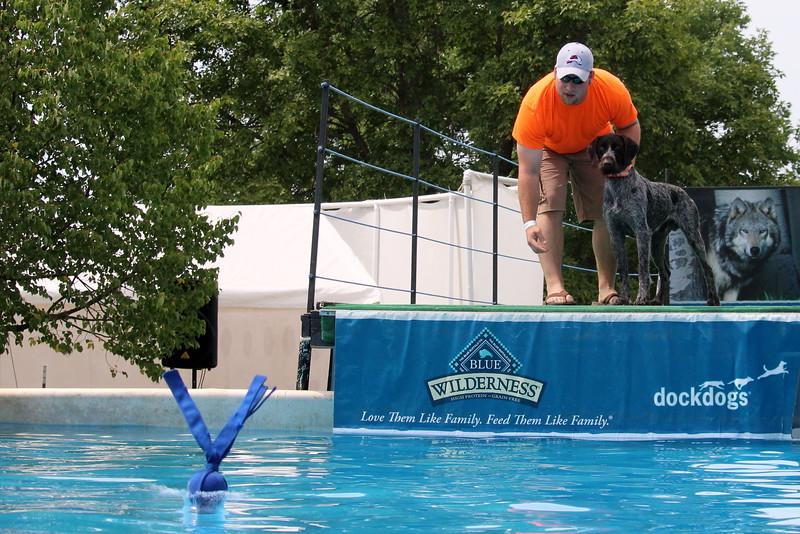 2015.8.6 Winnebago County Fair Dock Dogs (34).JPG