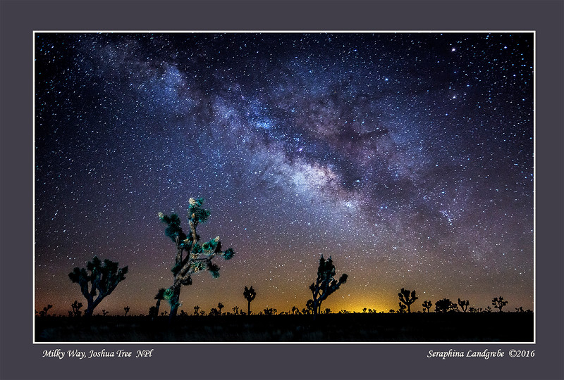 _DSC5979Joshua Tree Milky Way.jpg