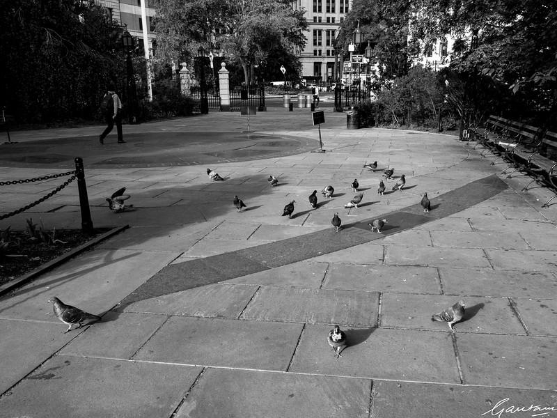 Outside City Hall, New York