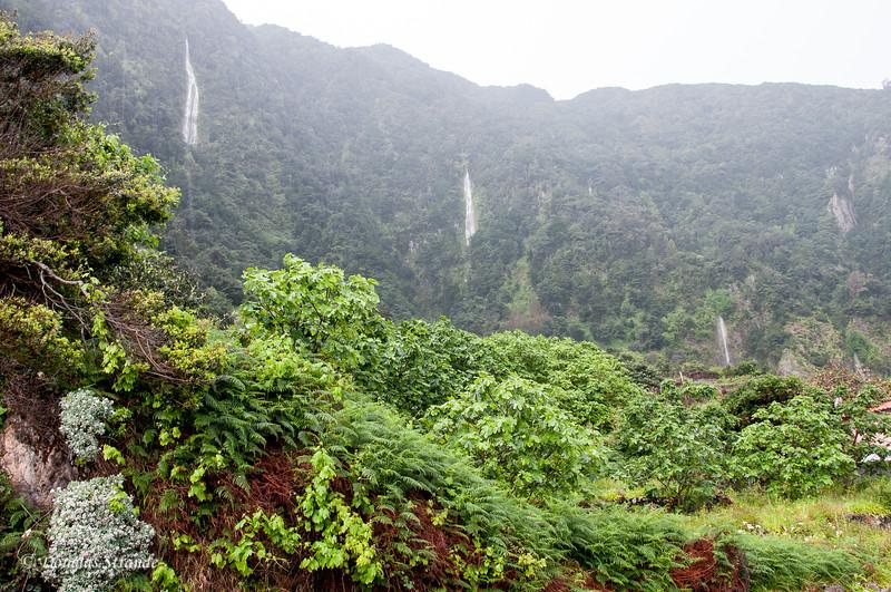 Island of Madeira - rain makes waterfalls everywhere