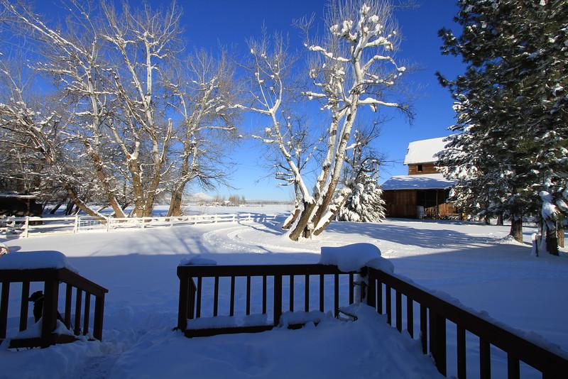 20100226_Snow scenery_1281.JPG