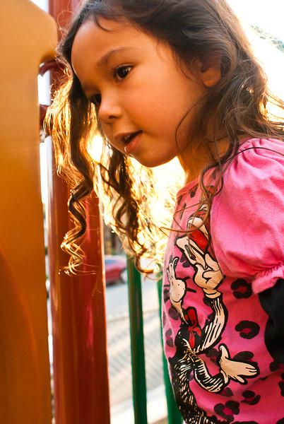 20110122_SierraMadreHikeandPark_081.jpg