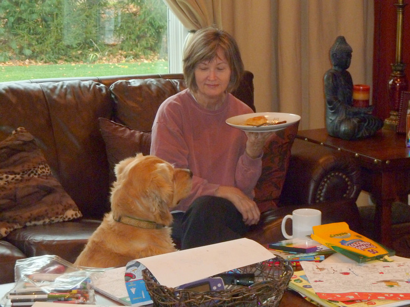 Rex begging for Nana's waffles