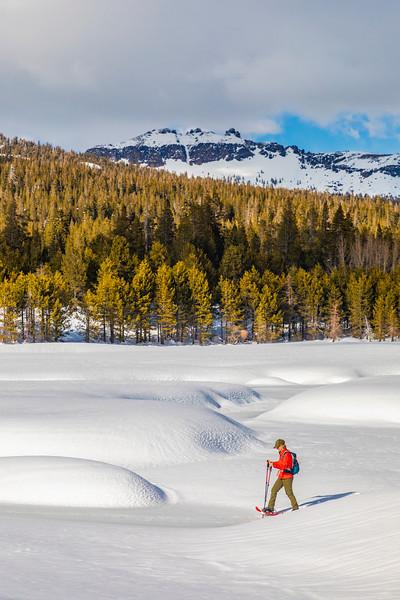 Snowshoer near Castle Peak
