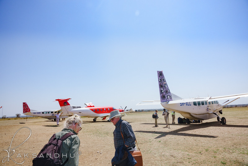 SafariTroop-123.jpg