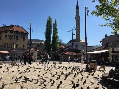 Bosnia, Croatia, Slovenia, and Italy Trip; May/ June 2018