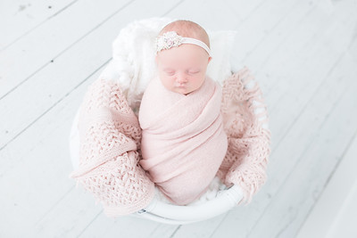 Dove Newborn
