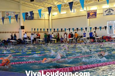 Swimming: Tuscarora-Woodgrove-Briar Woods (1-5-2013 by Jeff Vennitti)