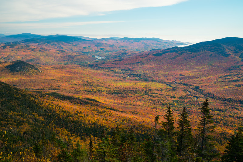 Maine Fall 2019-34.jpg