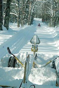 Blazing The Trails