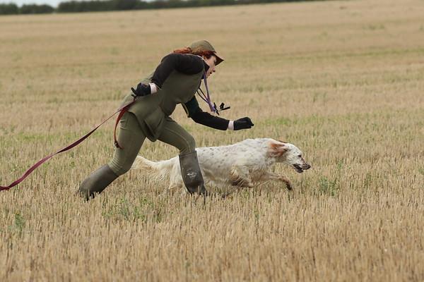 Briony Novice Stake Snettisham 6-09-17  Pics by Rob Gould